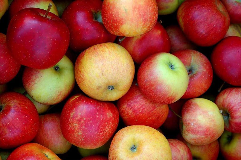 Valori nutrizionali mela con la buccia