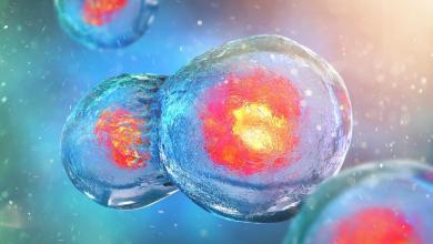 Photo of Malattie da accumulo lisosomiale: un danno genetico per le cellule