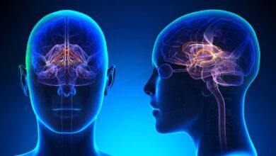 Photo of Tumori del sistema nervoso centrale: rischi e possibilità di guarigione