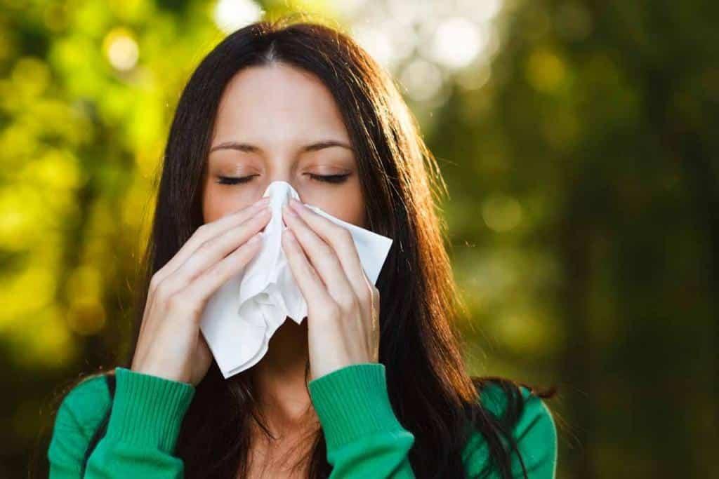 Allergia acari e asma